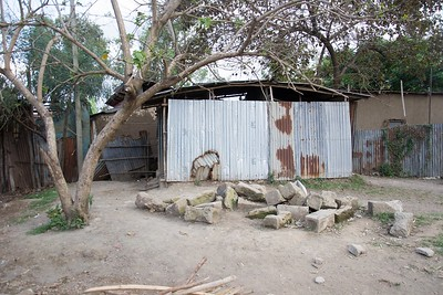 Link Ethiopia project update: Successful completion of the Kera Hora toilet blocks