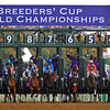 The field breaks for the 2015 Breeders' Cup Distaff