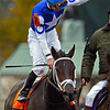 Tepin wins the Grade I Breeders' Cup Mile at Keeneland Race Course with Julien Leparoux up. 10.31.2015