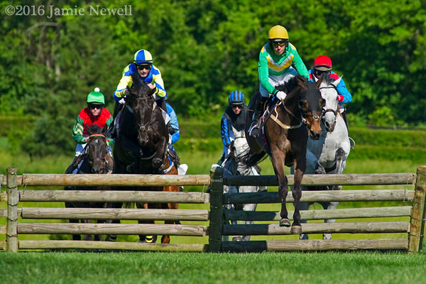 Scenes from Iroquois Steeplechase day in Nashville, TN. 2016