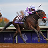 Nyquist wins the Breeders' Cup Juvenile