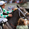 6-year-old Fabulous Strike gets spongued by rider Ramon Dominguez after winning the Grade II True North Handicap at Belmont Park in Elmont, NY. 6.6.2009