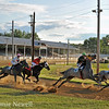 Thoroughbred racing at the Clark County Fair