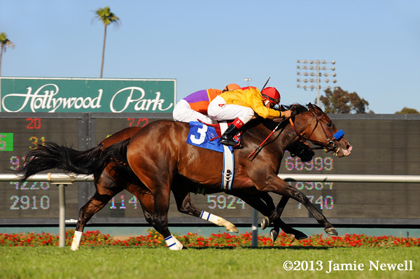 Tuscan Evening wins the Royal Heroine Mile at Hollywood Park