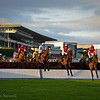 Steeplechase Racing at Leopardstown