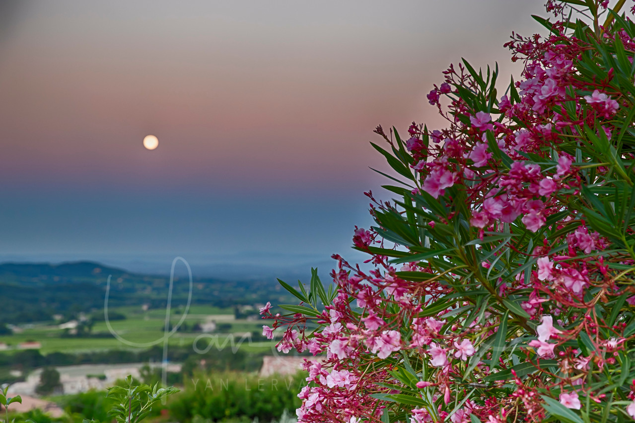 Full moon above the countryside