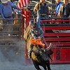 Professional bull riding at the Coles County Fair in Charleston, IL. 8.2016