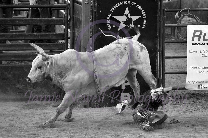 Watch that Bull