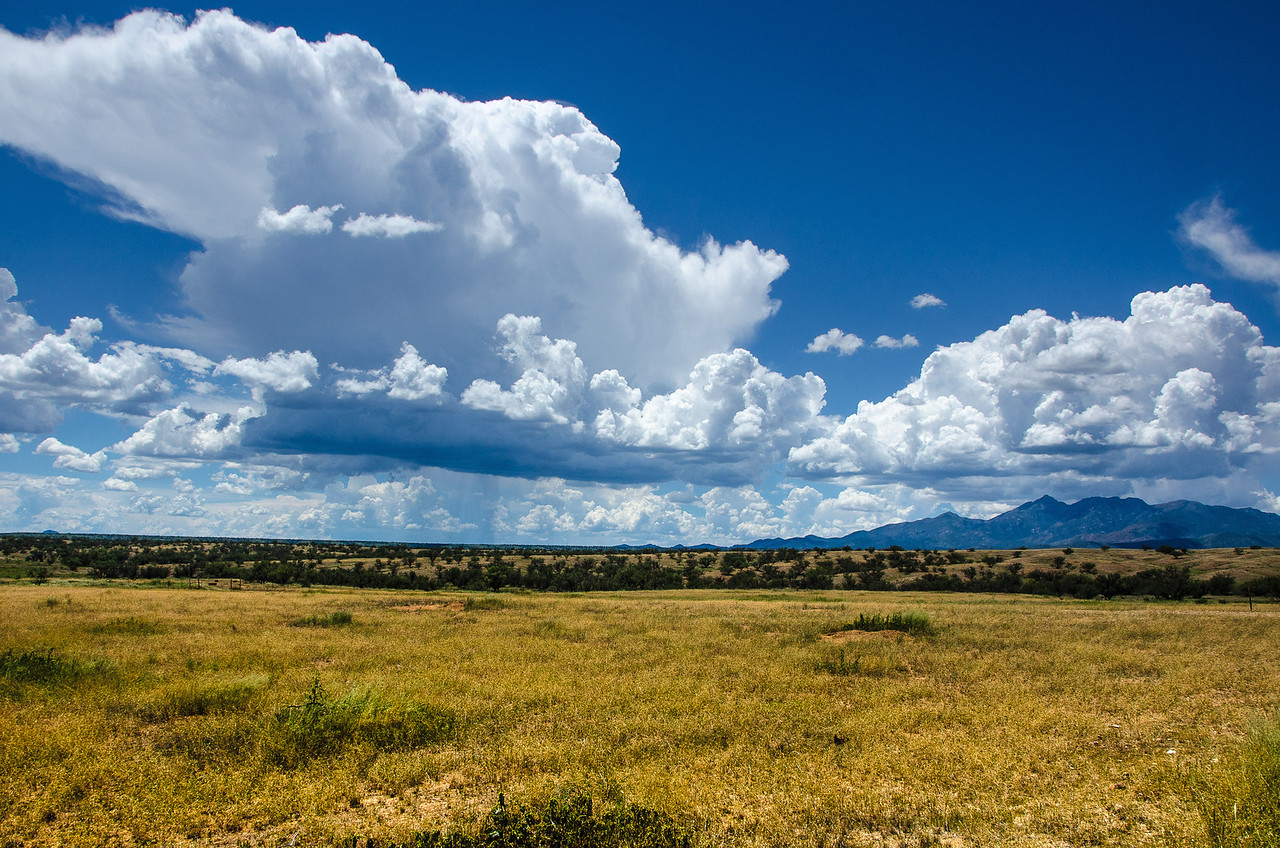 8.16.2013 - View of the Santa Rita Mountains from the Empire Ranch.