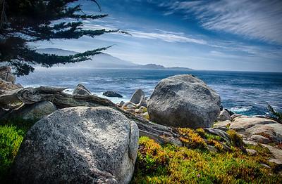 3.15.2013 - Scenes from the Monterey Peninsula