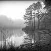 011811_FoggyMorning_2256