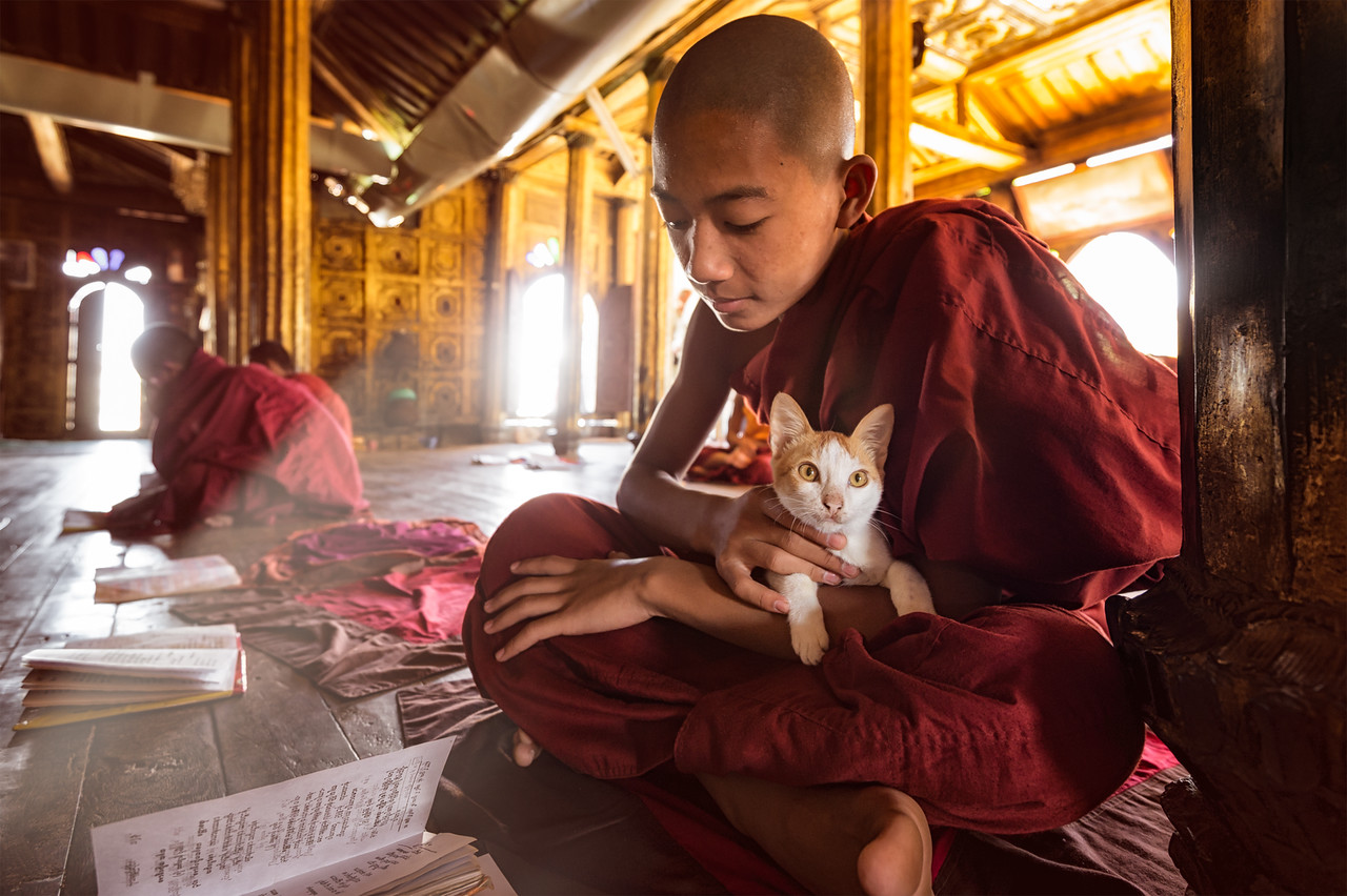 Monks studying at Shwe Yan Pyay Monastery