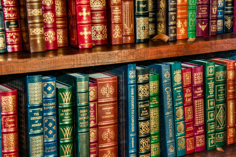"""<h3><strong>Today's Photo: The Classics</strong></h3> I have always loved books. When I was growing up, I would read just about anything I could get my hands on. My favorite are science fiction and fantasy but I really like the classics. One of my favorite authors is Terry Goodkind, author of the Sword of Truthseries. I was super excited when it was made into a television series. Too bad it only got enough interest for two seasons. I got this shot at my brother's office. He has a whole wall full of """"The Classics.""""  Read more at the <a href=""""http://justshootingmemories.com"""">Daily Photography Blog</a> Just Shooting Memories!..."""