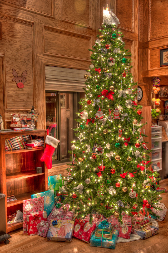 """<h3><strong>Today's Photo: The Christmas Tree</strong></h3> Wow, what a busy day. I can't think of many more days which have been as nonstop as today has been. A few minutes after getting everything finalized last night, I was able to get this shot of theChristmastree. I was pleasantly surprised at the colors and intensity of the lights.  Read more at the <a href=""""http://justshootingmemories.com"""" rel=""""nofollow"""">Daily Photography Blog</a> Just Shooting Memories!..."""