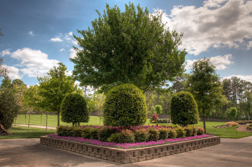 "<h3><strong>Today's Photo:  A Tree and Some Bushes</strong></h3> A couple of weekends ago, I made it by the <a title=""Tellus"" href=""http://www.tellusmuseum.org/"" target=""_blank"">Tellus Science museum</a>.  I have been by it many times.  I even promised the children to take them to it probably as many.  Finally we made it.  It is a pretty cool museum, but what I noticed the most was not inside the museum itself.  The grounds are immaculate.  The lawn looks like a golf green or baseball field.  The landscaping looks like something from a major flower garden and it is all hidden from nearby Highway 411 and Interstate 75.  I never would have guessed that this little museum hid such a gem of landscaping.  Read more at the <a href=""http://justshootingmemories.com"">Daily Photography Blog</a> Just Shooting Memories!..."