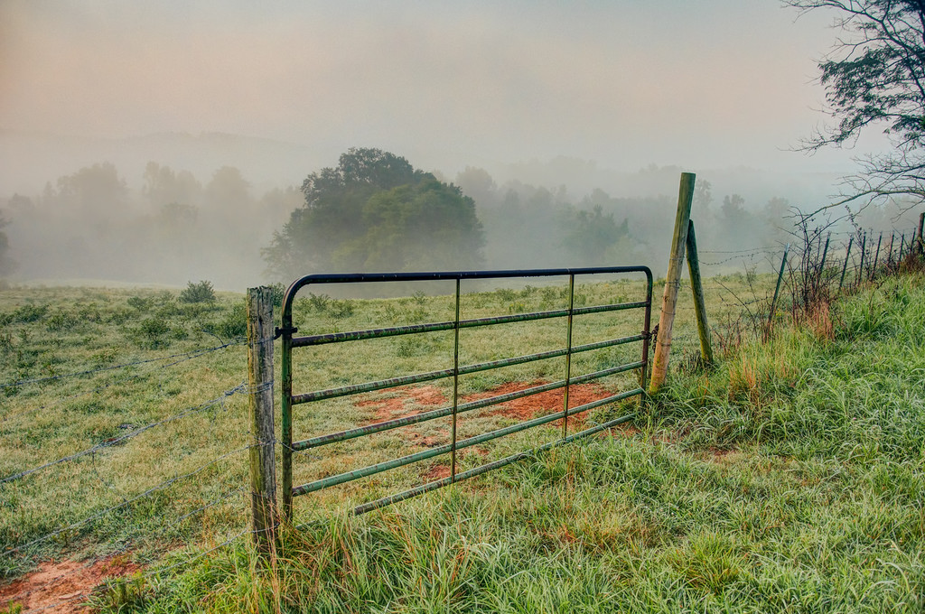 "<h3><strong>Today's Photo:  Gate to the Fog</strong></h3> I never tire of this gate or maybe it is the huge range of weather and colors that I see here.  Most of the summer, I get to see lots of fog and then in the spring and fall, I see some really crisp clouds and great colors.  This shot was in the middle of July.  I am sure it was after one of our famous night time thunderstorms.  Read more at the <a href=""http://justshootingmemories.com"">Daily Photography Blog</a> Just Shooting Memories!..."