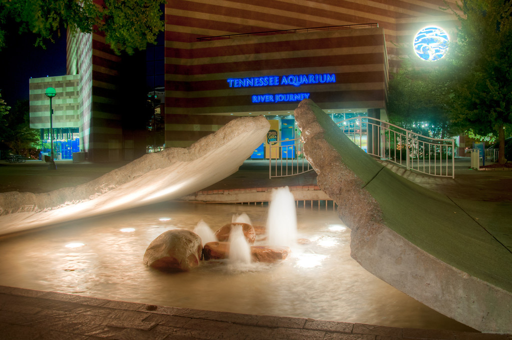"""<h3><strong>Today's Photo: The River Journey</strong></h3> The Tennessee aquarium began with just one building, the River Journey. The building is situated so that you ride an escalator to the top and then walk down. The walk down is made so that you journey through all the different areas and ecosystems of the Tennessee River. Just in front of the River Journey building is this fountain. It attracts a lot of attention during the summer. There are kids always playing here. I was fortunate enough to get this shot late with no one around.  Read more at the <a href=""""http://justshootingmemories.com"""">Daily Photography Blog</a> Just Shooting Memories!..."""