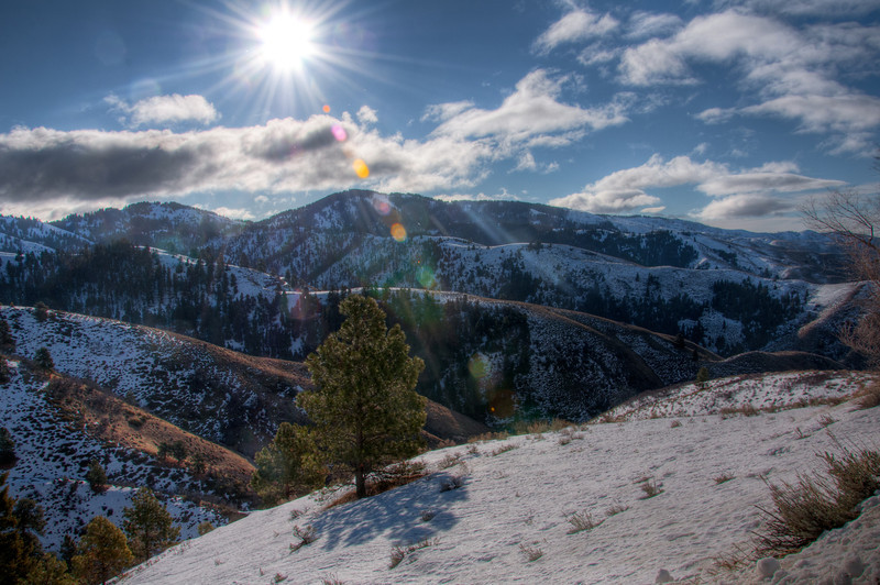 """<h3><strong>Today's Photo: Another Cold Boise Forest</strong></h3> I spent several hours driving through the Boise National Forest. When I started the drive out of Boise, the temperature was not that bad, in fact, I believe it was not even below freezing. However, as I slowly wound my way up the Bogus Basin Road, that changed. Not only did the temperature change, but I hit the tree line. This was just at the tree / snow line as I went up the mountain ridge. When I crossed over to the western side of the ridge, the driving became a lot more interesting.  Read more at the <a href=""""http://justshootingmemories.com"""">Daily Photography Blog</a> Just Shooting Memories!..."""
