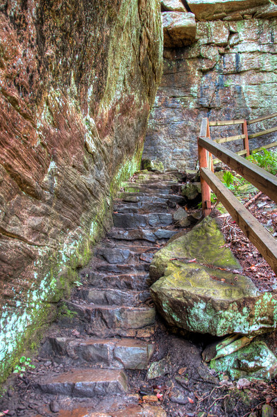 """<h3 style=""""text-align: left;""""><strong>Today's Photo:  Stone Steps</strong></h3> During my recent trip to Fall Creek Falls State Park in Tennessee, I had to make the trip to the base of the falls.  This is just a half mile trek.  Not bad, right?  That is until you start walking.  This trail is labeled strenuous for a reason.  It starts at the overlook to the falls and plunges straight into the gorge that the falls run into.  There are tons of steps, wooden steps, rock steps, dirt steps, even steps that are covered in moss.  Although there is not much of that from all the traffic.  These were about half way down and very slick from the water dripping down from the canyon walls above."""