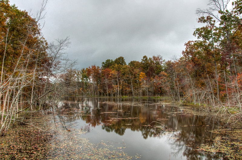 """<h3 style=""""text-align: left;""""><strong>Today's Photo:  Fall Colors</strong></h3> <strong></strong>On our way home from Fall Creek Falls, I drove down this long two lane road with not much along it.  I began to get worried that I had taken a wrong turn somewhere.  Then, I passed this little lake in the middle of nowhere.  Of course, I did not realize what a good photographic opportunity it would bring until I was nearly past it.  I had to go a short distance and execute a quick turnaround.  These turned out pretty good.  I just wished I remembered that I turned the ISO up for some night shooting."""