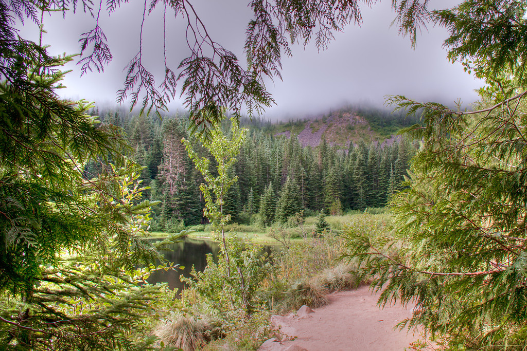 """<h3><strong>Today's Photo: Mirror Lake Loop</strong></h3> The hike to Mirror Lake at the foot of <a title=""""Mount Hood"""" href=""""http://justshootingmemories.com/2011/04/09/mount-hood/"""">Mount Hood</a> in Oregon is a hike I highly recommend. If you get there early enough, there is plenty of parking and almost no one on the trail. While well maintained and very easy to follow, the trail is not for the faint of heart. It begins as a gentle climb from the roadway and then all the sudden begins switchbacks up the mountain. However, once you reach the top, you exit the large old growth trees and get your first glimpse of Mirror Lake with Tom, Dick and Harry mountain rising up behind it. The loop around Mirror Lake is a fairly flat walk with beautiful views of the lake and Mount Hood. Just watch out for the little snakes around the sandy area at the west side of the lake. For the brave of heart, you can take the Tom, Dick and Harrymountaintrail to the top of the mountain and get a good view of <a title=""""Mount Hood and Mirror Lake"""" href=""""http://justshootingmemories.com/2011/09/20/mount-hood-and-mirror-lake/"""">Mount Hood and Mirror Lake</a>.  Read more at the <a href=""""http://justshootingmemories.com"""" rel=""""nofollow"""">Daily Photography Blog</a> Just Shooting Memories!..."""