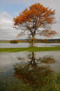 Flood plains, Unec, Slovenia