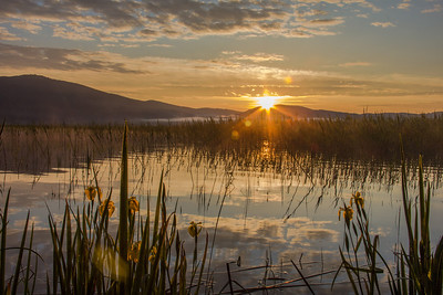 Sunrise at Cerknica Lake
