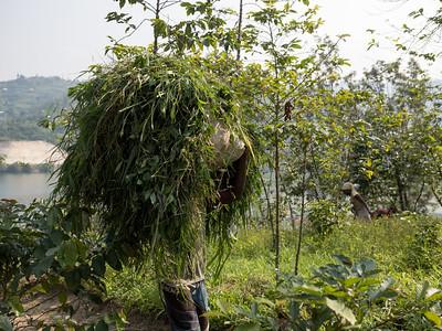 RichardTerborg_RwandaPP1_75