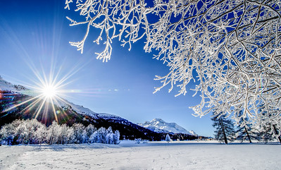 Frozen winter landscape in Switzerland on a sunny day
