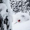 A heli skier enjoys a faceshot of powder snow with Stellar Heli Skiing near Kaslo, British Columbia.<br /> Athlete: Jason Remple<br /> Location: Kaslo, BC