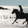 Horse riding on the beach, Cornwall
