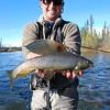 WIDGET - Tanana Notes: Fishing - Reinhard Neuhauser/Alaska Fishing & Raft Adventures