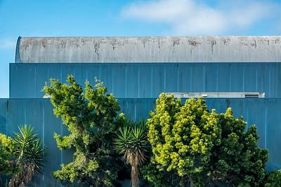 Trees_Warehouse 7_19 1