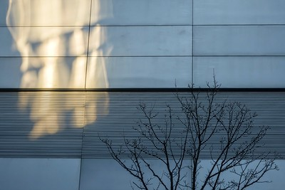 Abstract Light_Seattle 3_19 3