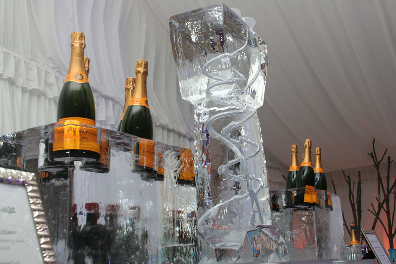 Ice luge at a Cape Cod wedding