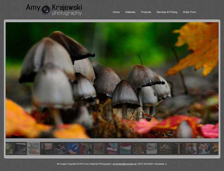 """<div class=""""siteDescription""""> <b>Amy Krajewski Photography</b> <p>Visit the site: <a href=""""http://amykrajew.smugmug.com"""" target=""""_blank"""">amykrajew.smugmug.com</a></p> </div>"""