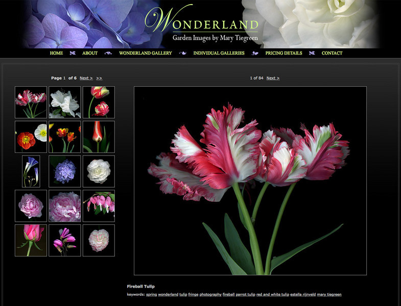 "<div class=""siteDescription""> <b>Wonderland - Garden Images by Mary Tiegreen</b> <p>Visit the site: <a href=""http://tiegreen.smugmug.com/"" target=""_blank"">www.tiegreen.smugmug.com</a></p> </div>"