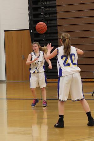 Schroeder Freshman Basketball