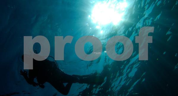 Dansereau Dive & Snorkel Stills - 27 Dec 10