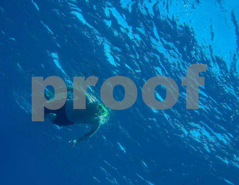 John during dolphin swim at Kailua Bay