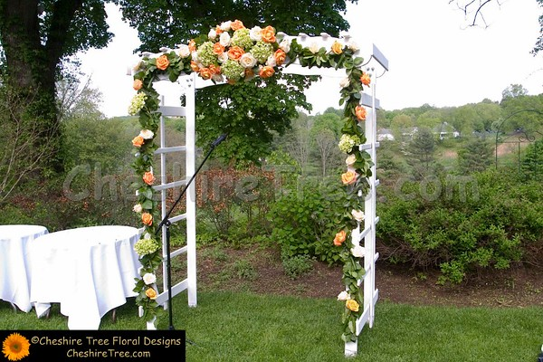 Wedding Arches & Backdrops