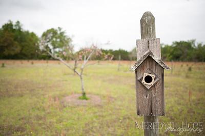 Backyard Farm Wedding by Wedding Belles Photo