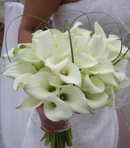 All calla lilies, with bear grass   ( price depends on count) $145 +