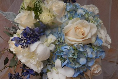Blue hydrangea, blue delphinium, orchids, roses grey miller, spray roses  $125