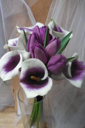 Picasso calla+ purple tulips $65