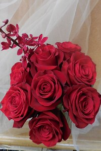 Red roses- red orchids $35-$45