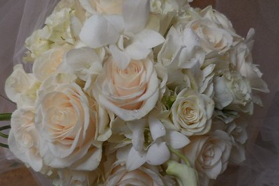 Ivory roses, hydrangea, orchids $120