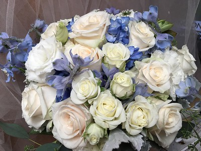 White spray roses, ivory roses, baby blue delphinium, white lisianthus    $120