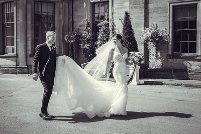 Wedding - Stephenson