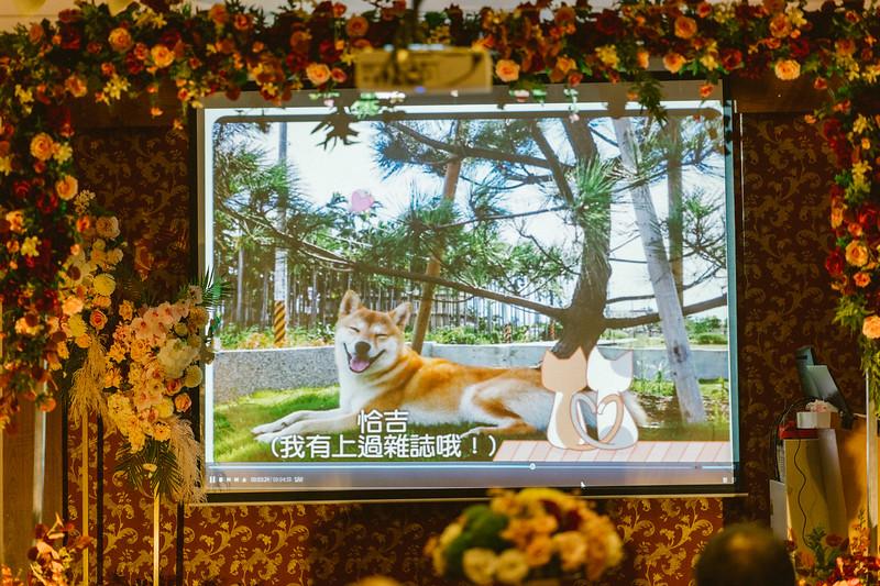 0322璇+閎S-456